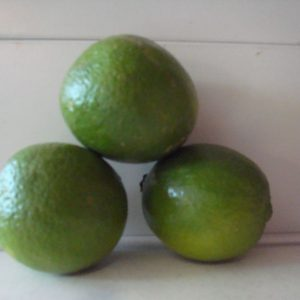 Fresh Lime 4pcs.