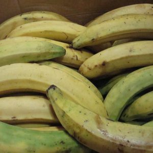 Saging – Plantains. 1Kg. Back in Stock