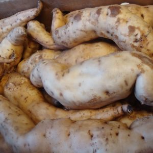 White Sweet  Potato 1kg.